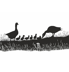Geese family on spring meadow vector