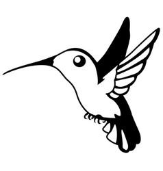 Hummingbird stencil vector