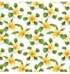 Plumeria seamless pattern vector