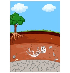 Soil Layers with dinosaur fossil vector image