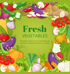 vegetables top view frame farmers market menu vector image vector image