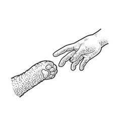 Hand reaches cat paw sketch vector