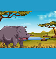 Hippopotamus in the savanna scene vector