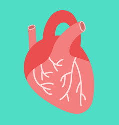 Human heart flat icon medicine and healthcare vector
