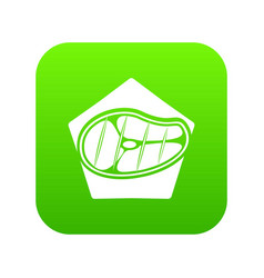meat icon green vector image