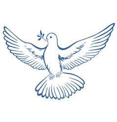 Pigeon dove icon vector