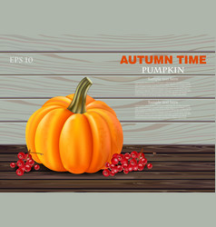 autumn pumpkin realistic banner layout vector image