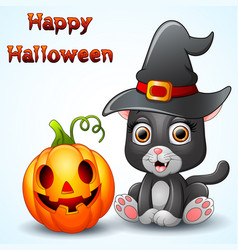 cat cartoon with a witch hat and pumpkin vector image