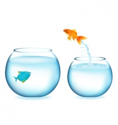 Goldfish jumping to other fish vector