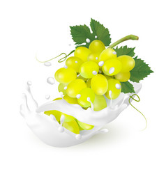 Green grapes in a milk splash on a transparent vector