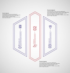 Hexagon infographic template divided to three vector