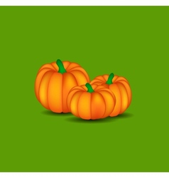 Orange Pumpkin Background vector image