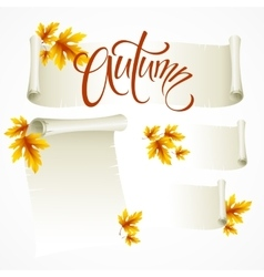 - scroll frame from autumn vector image