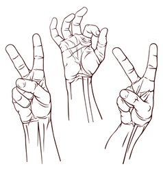 Set of three hands vector image