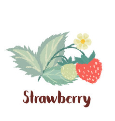 Strawberry forest berry vector