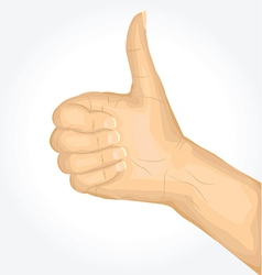 Thumbs Up Hand Sign vector