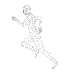 wireframe running woman vector image