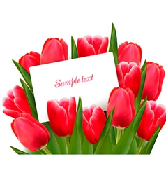 Red tulips and blank of card vector image vector image