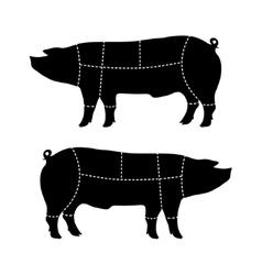 pork-cutting scheme vector image vector image