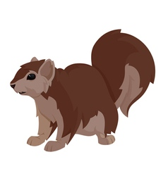 another squirrel vector image