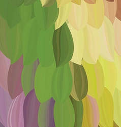 background exotic parrot feather vector image