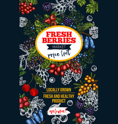 Berry blackboard banner with fresh wild fruit vector