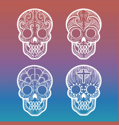 Calavera skull on colorful background vector