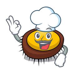 chef sea urchin character cartoon vector image
