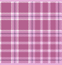 madras pattern vector image