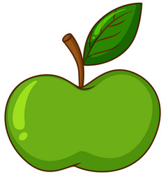 One green apple on white background vector