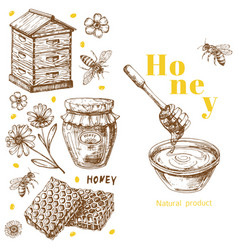 retro honey background template with hand vector image