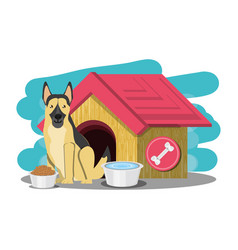 cute dogs design vector image