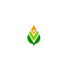 green leaf organic sign logo vector image