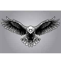 Hand drawing style of eagle vector