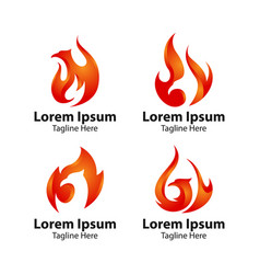 phoenix bird logo concept vector image