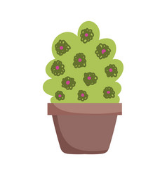potted plant flowers decoration isolated icon on vector image
