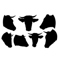 set cow heads vector image