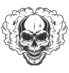 Skull in the smoke vector