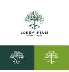 Tree and root logo vector