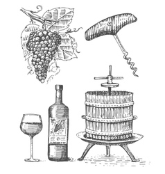 Press for grapes sketch corkscrew wine bottle and vector image