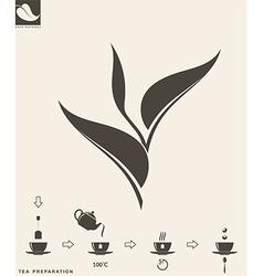 Tea preparation Leaf vector image