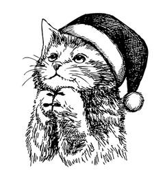christmas cat pet vector image