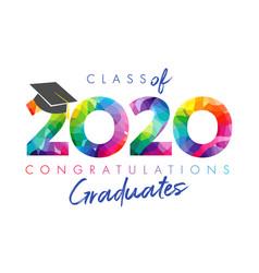 2020 facet colored graduate vector image
