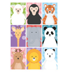 cute animals sheep giraffe tiger lion deer bear vector image