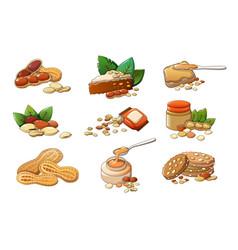 Peanut icons set cartoon style vector