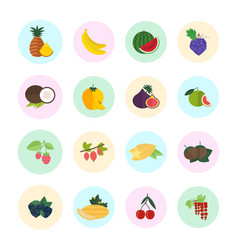 Set fruits vector