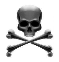 skull with bones jolly roger vector image vector image