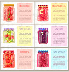 Canned vegetables fruits and berries preserve food vector