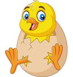 cartoon little chick hatching out the egg vector image
