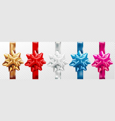golden red silver blue pink gift bow set vector image